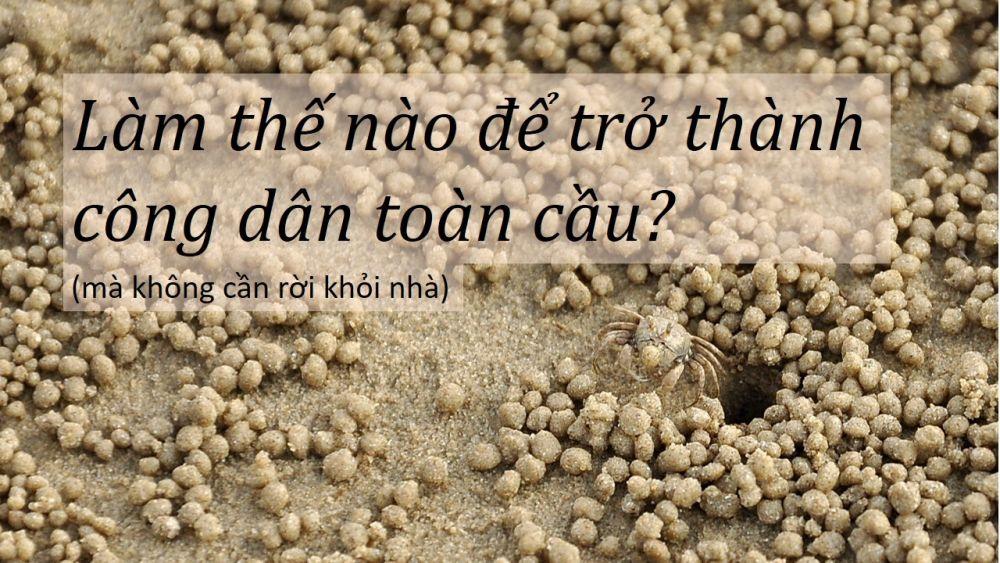 Cong Dan Toan Cau
