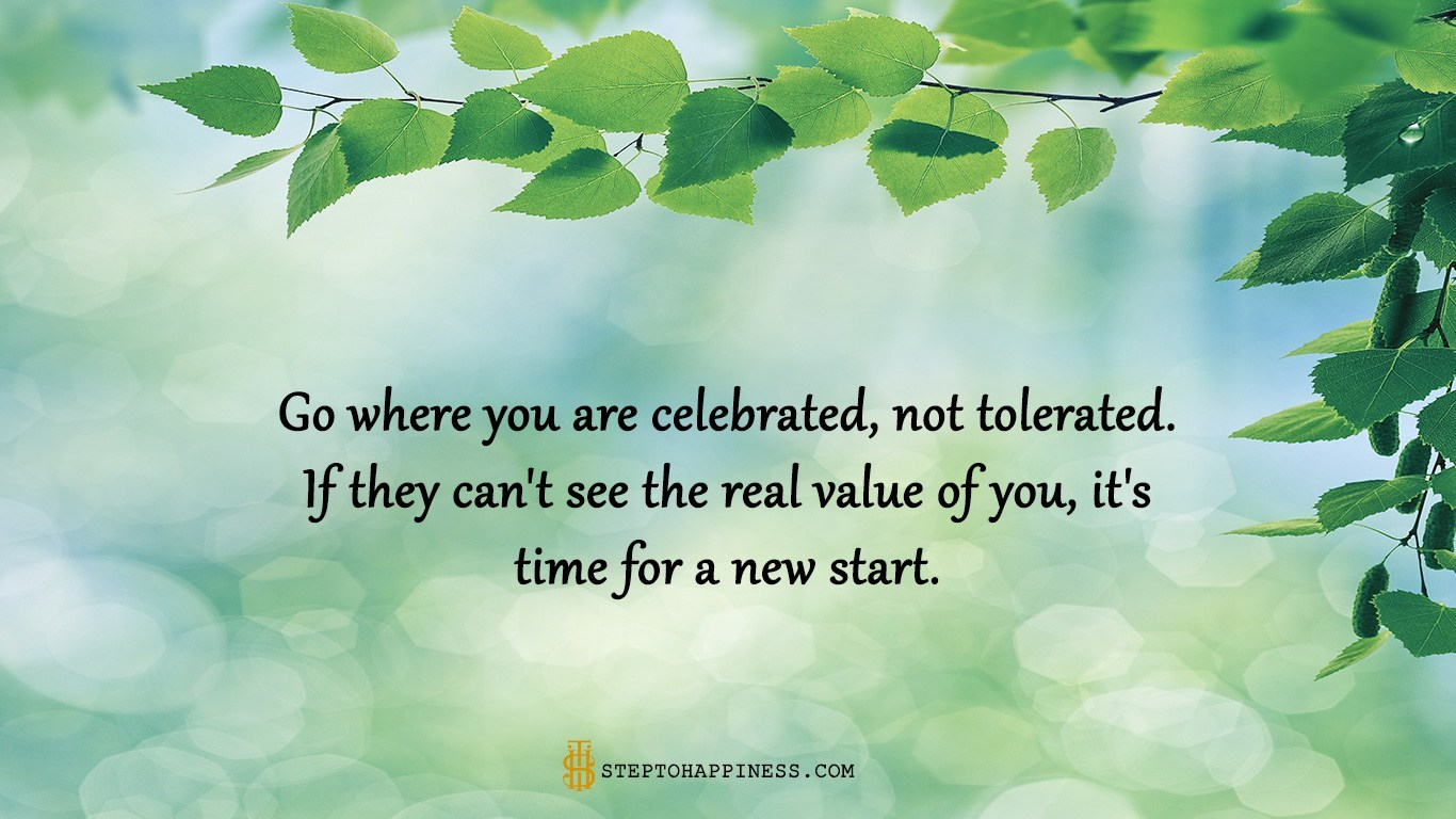 Kết quả hình ảnh cho Go where you are celebrated – not tolerated. If they can't see the real value of you, it's time for a new start.