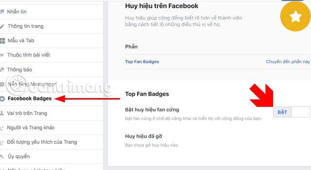 Menuthiết đặt Fanpage là Facebook Badges